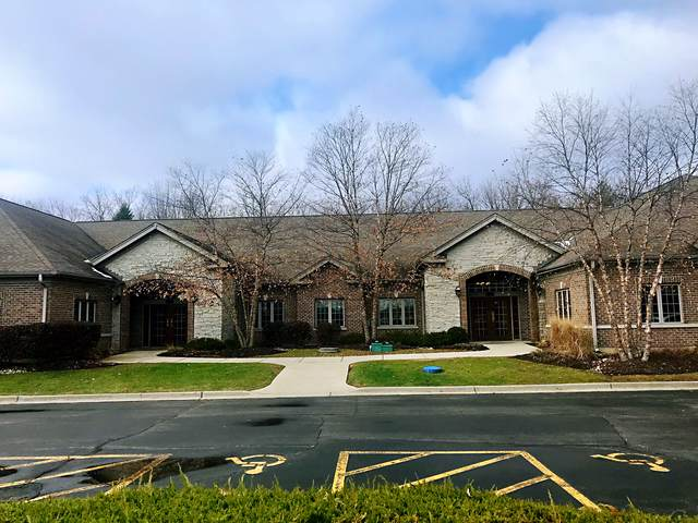 10 Executive Court #1, South Barrington, IL 60010 (MLS #10585517) :: The Wexler Group at Keller Williams Preferred Realty
