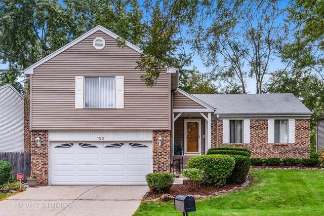 123 Lilac Lane, Buffalo Grove, IL 60089 (MLS #10586506) :: Helen Oliveri Real Estate