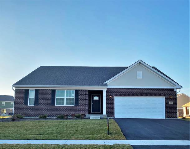 2035 Bristol Park Road, New Lenox, IL 60451 (MLS #10587867) :: Property Consultants Realty