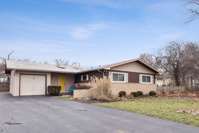 3 Treebark Court, Schaumburg, IL 60193 (MLS #10588008) :: LIV Real Estate Partners
