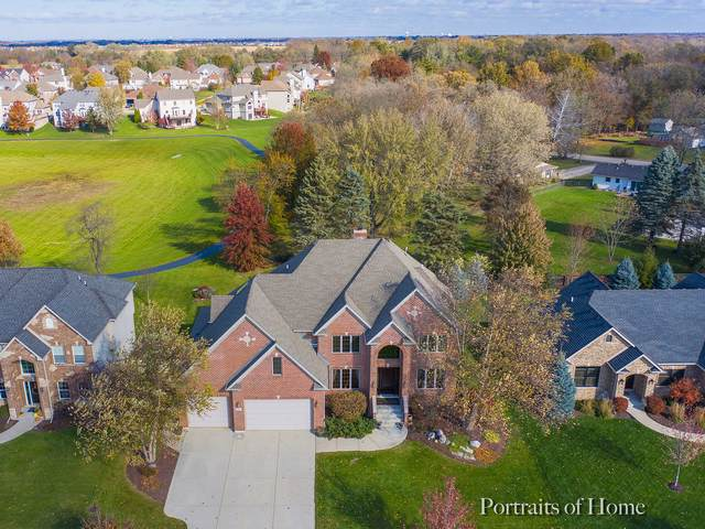 1251 Clearwater Drive, Yorkville, IL 60560 (MLS #10588338) :: Property Consultants Realty