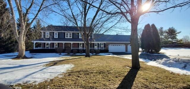 441 Fairway View Drive, Algonquin, IL 60102 (MLS #10592477) :: Ryan Dallas Real Estate