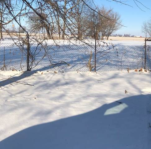LOT 1 E Kyle Street, OGDEN, IL 61859 (MLS #10594234) :: Littlefield Group