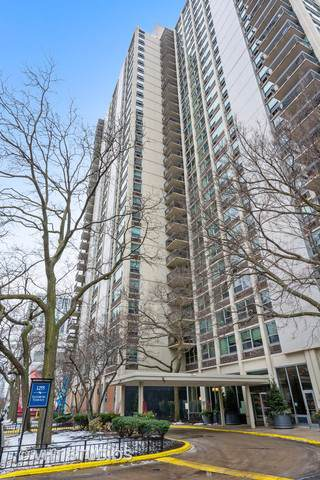 1255 N Sandburg Terrace #1007, Chicago, IL 60610 (MLS #10610036) :: John Lyons Real Estate