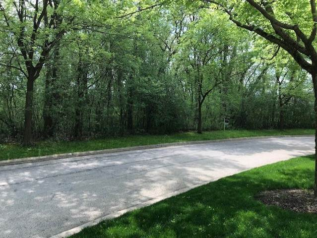 Lot 23 Wedgewood Drive, Lake Forest, IL 60045 (MLS #10610397) :: John Lyons Real Estate