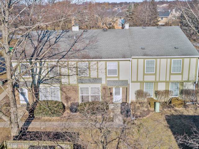 1653 Valley Forge Court B, Wheaton, IL 60189 (MLS #10610689) :: Lewke Partners