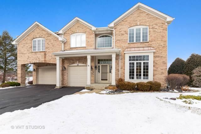 25 Amber Court, Lindenhurst, IL 60046 (MLS #10611973) :: Baz Realty Network | Keller Williams Elite