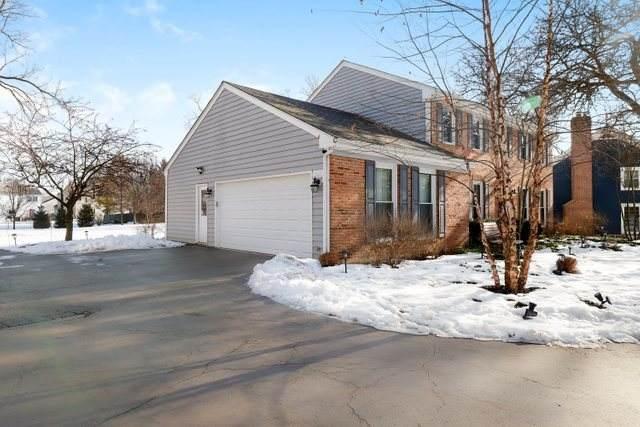 998 Plum Tree Road, Fox River Grove, IL 60021 (MLS #10612952) :: Lewke Partners