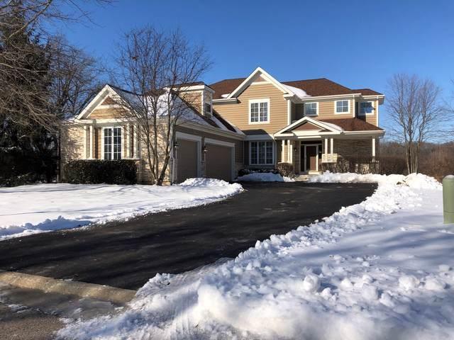 8101 Boulder Court, Long Grove, IL 60047 (MLS #10613217) :: Angela Walker Homes Real Estate Group