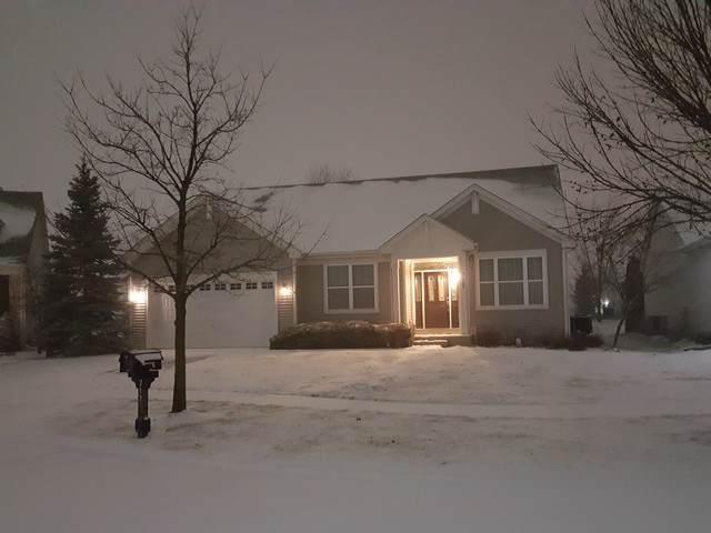717 Bohannon Circle, Oswego, IL 60543 (MLS #10613715) :: Baz Realty Network | Keller Williams Elite