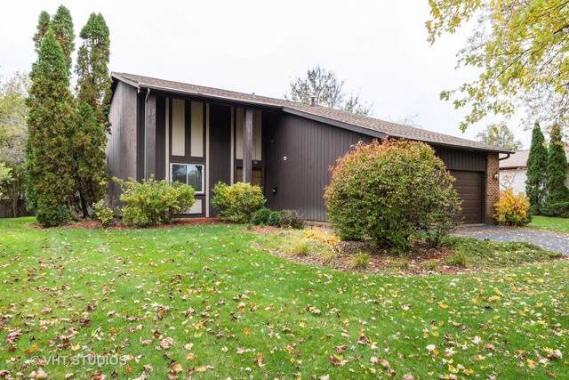 1163 N Thackeray Drive, Palatine, IL 60067 (MLS #10616343) :: Berkshire Hathaway HomeServices Snyder Real Estate