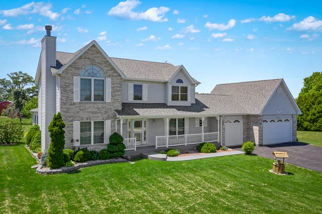 17919 Springbrook Circle, Union, IL 60180 (MLS #10616468) :: Property Consultants Realty