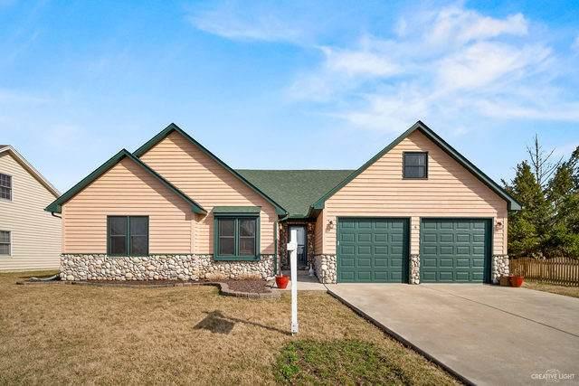 430 Meadow Lane, Hinckley, IL 60520 (MLS #10616515) :: Ani Real Estate