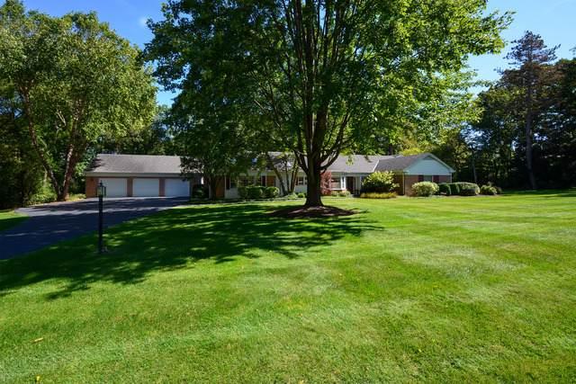 1049 Blackburn Drive, Inverness, IL 60067 (MLS #10616865) :: Angela Walker Homes Real Estate Group