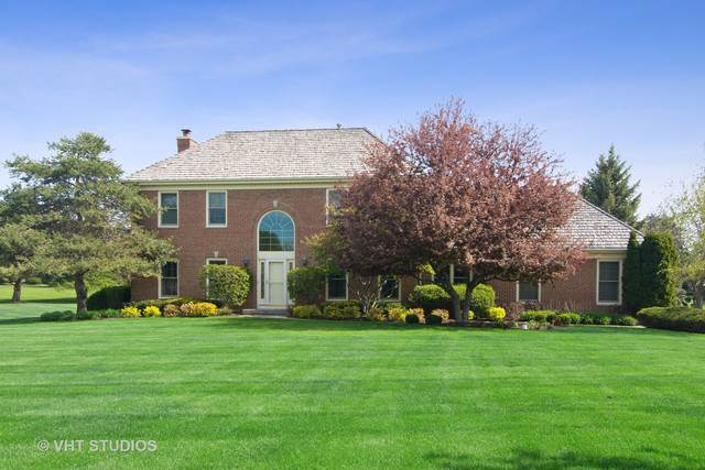 193 Boxwood Drive, Hawthorn Woods, IL 60047 (MLS #10617881) :: Berkshire Hathaway HomeServices Snyder Real Estate
