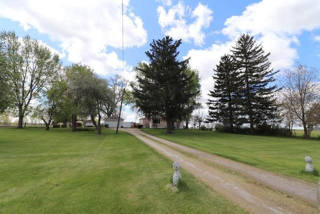 925 W Prairie Road, Mazon, IL 60444 (MLS #10618222) :: Suburban Life Realty