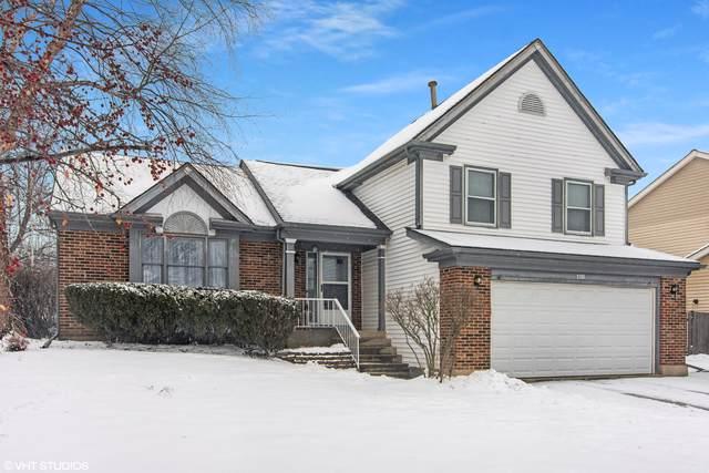 110 Newfield Drive, Buffalo Grove, IL 60089 (MLS #10618436) :: Baz Realty Network   Keller Williams Elite