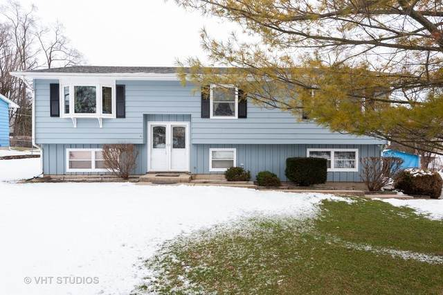7504 Windsor Avenue, Spring Grove, IL 60081 (MLS #10632474) :: Property Consultants Realty