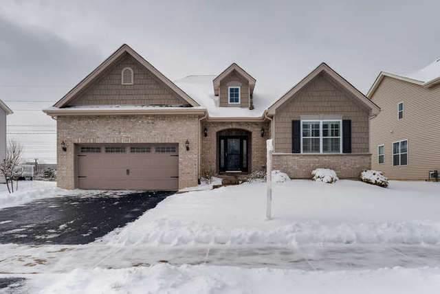 788 N Sleepy Hollow Lane, Romeoville, IL 60446 (MLS #10634611) :: The Wexler Group at Keller Williams Preferred Realty