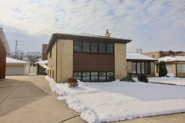 4513 W 102nd Place, Oak Lawn, IL 60453 (MLS #10636149) :: Baz Network | Keller Williams Elite