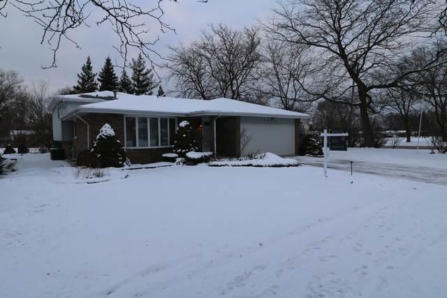 8800 Leslie Drive, Orland Hills, IL 60487 (MLS #10636154) :: Helen Oliveri Real Estate