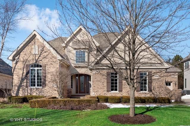 1008 Ridgeview Drive, Inverness, IL 60010 (MLS #10637284) :: Ani Real Estate