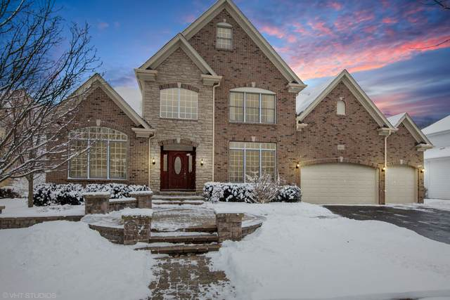 3655 Hector Lane, Naperville, IL 60564 (MLS #10637922) :: Littlefield Group