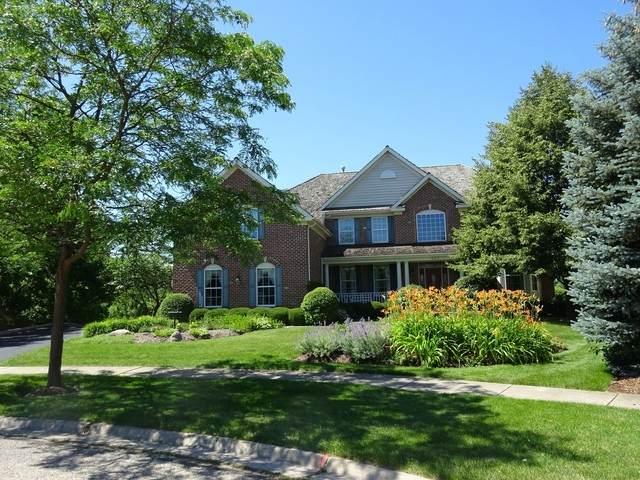 222 Bridle Path Court, Fox River Grove, IL 60021 (MLS #10638002) :: Ani Real Estate