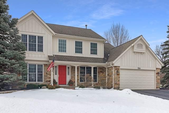 750 Warwick Court, Lake Zurich, IL 60047 (MLS #10640670) :: John Lyons Real Estate