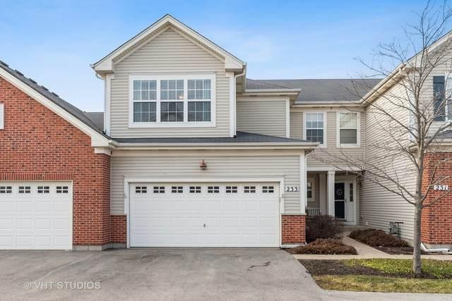 233 Dorset Avenue, Oswego, IL 60543 (MLS #10643209) :: The Dena Furlow Team - Keller Williams Realty