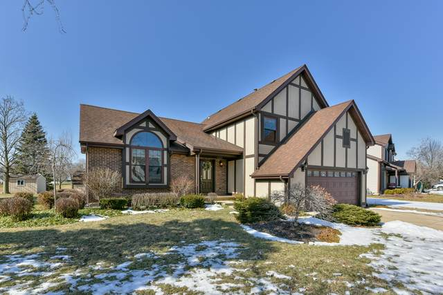 360 Stone Avenue, Lake Zurich, IL 60047 (MLS #10643827) :: Helen Oliveri Real Estate