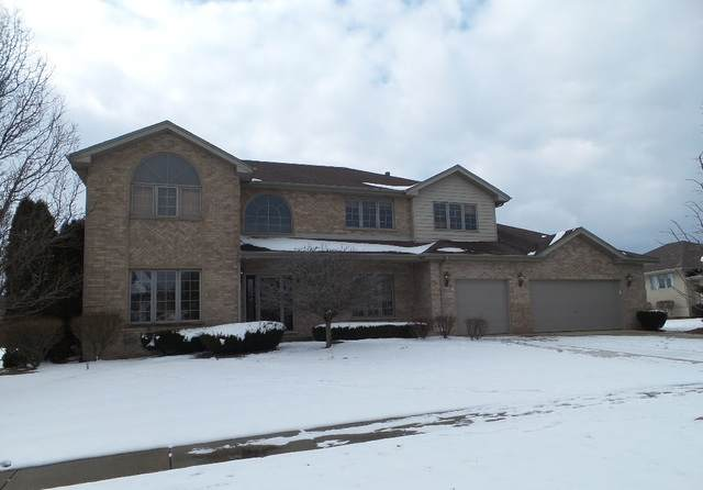 22188 Clove Drive, Frankfort, IL 60423 (MLS #10645120) :: The Wexler Group at Keller Williams Preferred Realty