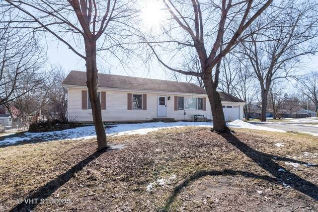 21481 W Willow Road, Lake Zurich, IL 60047 (MLS #10645658) :: Helen Oliveri Real Estate