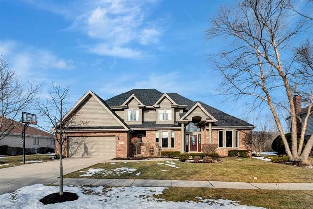 21367 Ginger Lane, Frankfort, IL 60423 (MLS #10647124) :: Touchstone Group