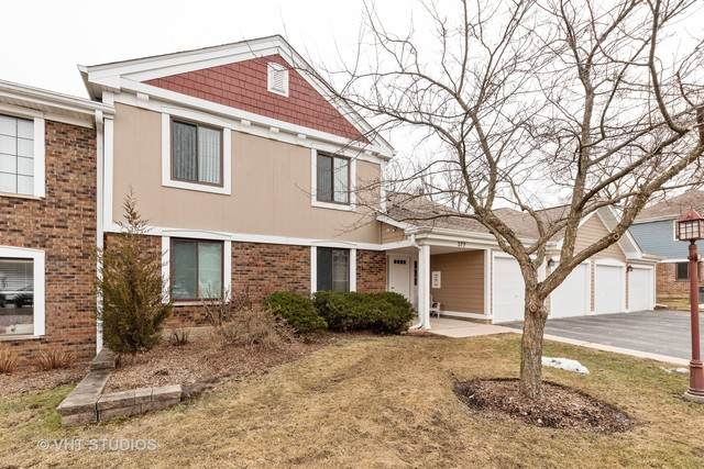 377 Sandalwood Lane D2, Schaumburg, IL 60193 (MLS #10647170) :: Property Consultants Realty