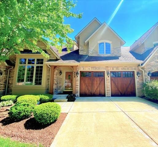 524 Orleans Avenue, Naperville, IL 60565 (MLS #10651765) :: Littlefield Group