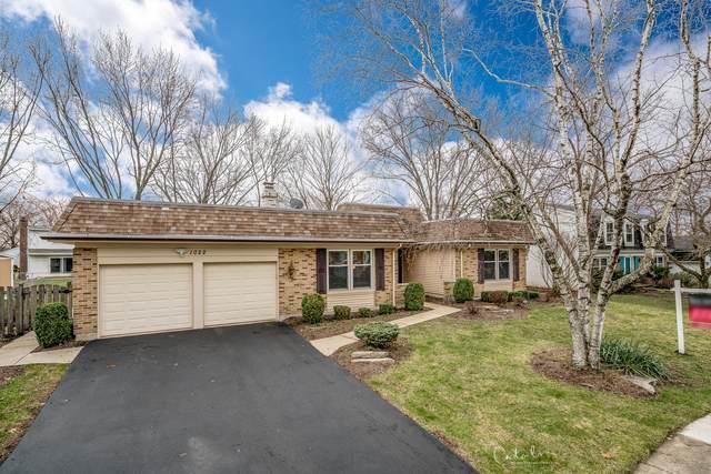 1022 W Skylark Drive, Palatine, IL 60067 (MLS #10653190) :: Helen Oliveri Real Estate
