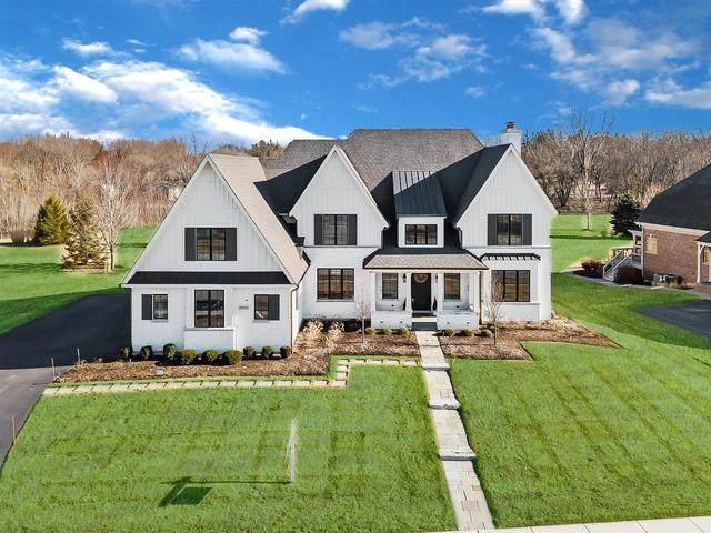 4N935 Prairie Lakes Boulevard, St. Charles, IL 60175 (MLS #10659700) :: Property Consultants Realty