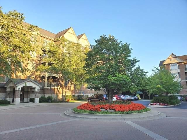 425 Village Green #314, Lincolnshire, IL 60069 (MLS #10659777) :: John Lyons Real Estate