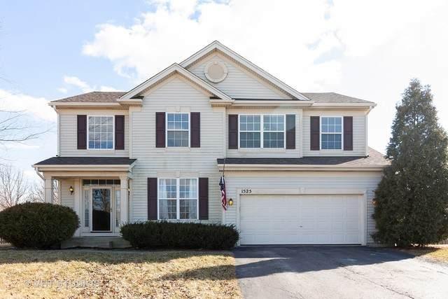 1525 Scarlet Drive, Bolingbrook, IL 60490 (MLS #10662565) :: Lewke Partners