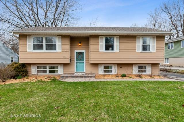 345 Woodland Drive, Grayslake, IL 60030 (MLS #10663839) :: The Wexler Group at Keller Williams Preferred Realty