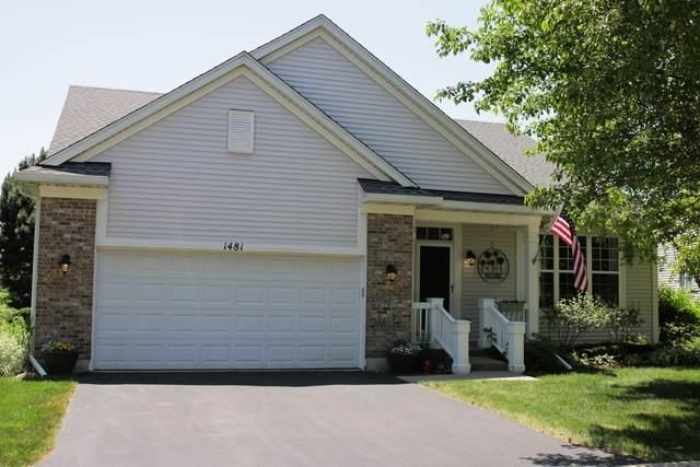 1481 W Flint Lane, Romeoville, IL 60446 (MLS #10664157) :: Property Consultants Realty