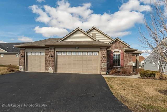 992 Plaza Lane, Pingree Grove, IL 60140 (MLS #10667035) :: The Wexler Group at Keller Williams Preferred Realty