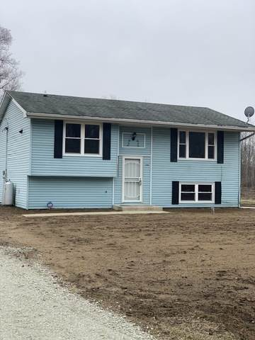 14158 E 2000 Road S, Pembroke Twp, IL 60958 (MLS #10670497) :: Property Consultants Realty