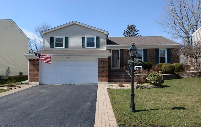 210 Chatham Lane, Roselle, IL 60172 (MLS #10677604) :: The Wexler Group at Keller Williams Preferred Realty
