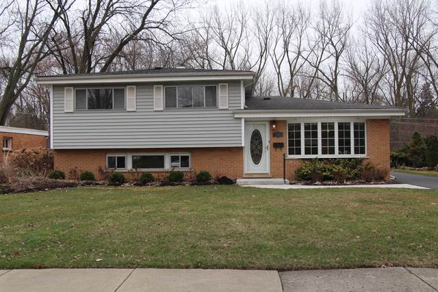 228 E Park Avenue, Bloomingdale, IL 60108 (MLS #10677796) :: The Wexler Group at Keller Williams Preferred Realty