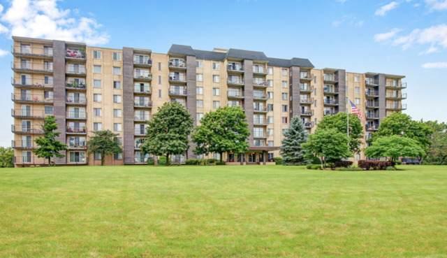 5400 Walnut Avenue #815, Downers Grove, IL 60515 (MLS #10679151) :: Ryan Dallas Real Estate