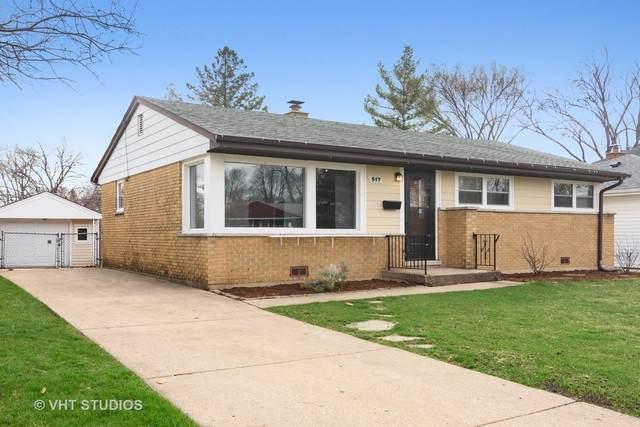 517 N Russel Street, Mount Prospect, IL 60056 (MLS #10680009) :: Lewke Partners
