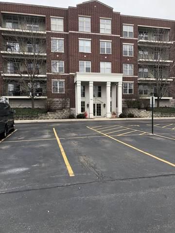 715 Astor Lane #304, Wheeling, IL 60090 (MLS #10680367) :: John Lyons Real Estate