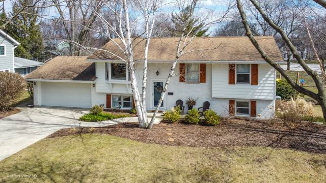 1232 S 12th Street, St. Charles, IL 60174 (MLS #10680838) :: BN Homes Group